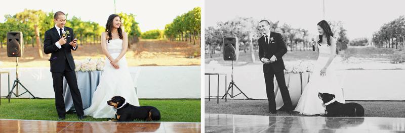 葡萄园里的婚礼 - 凡人 - 凡人的博客